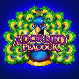 Adorned Peacock